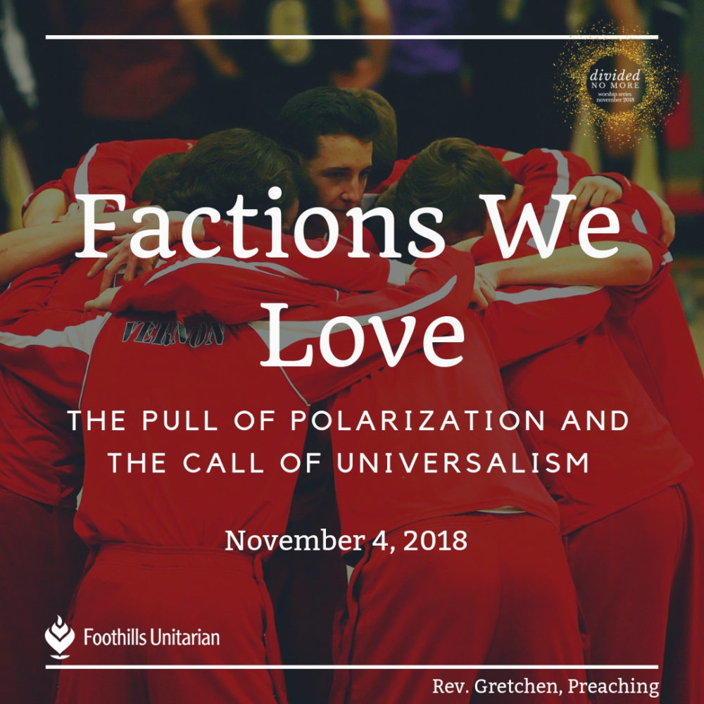 Factions We Love Image
