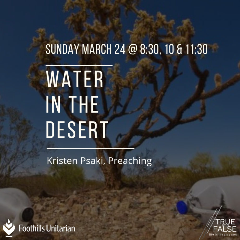Water in the Desert Image