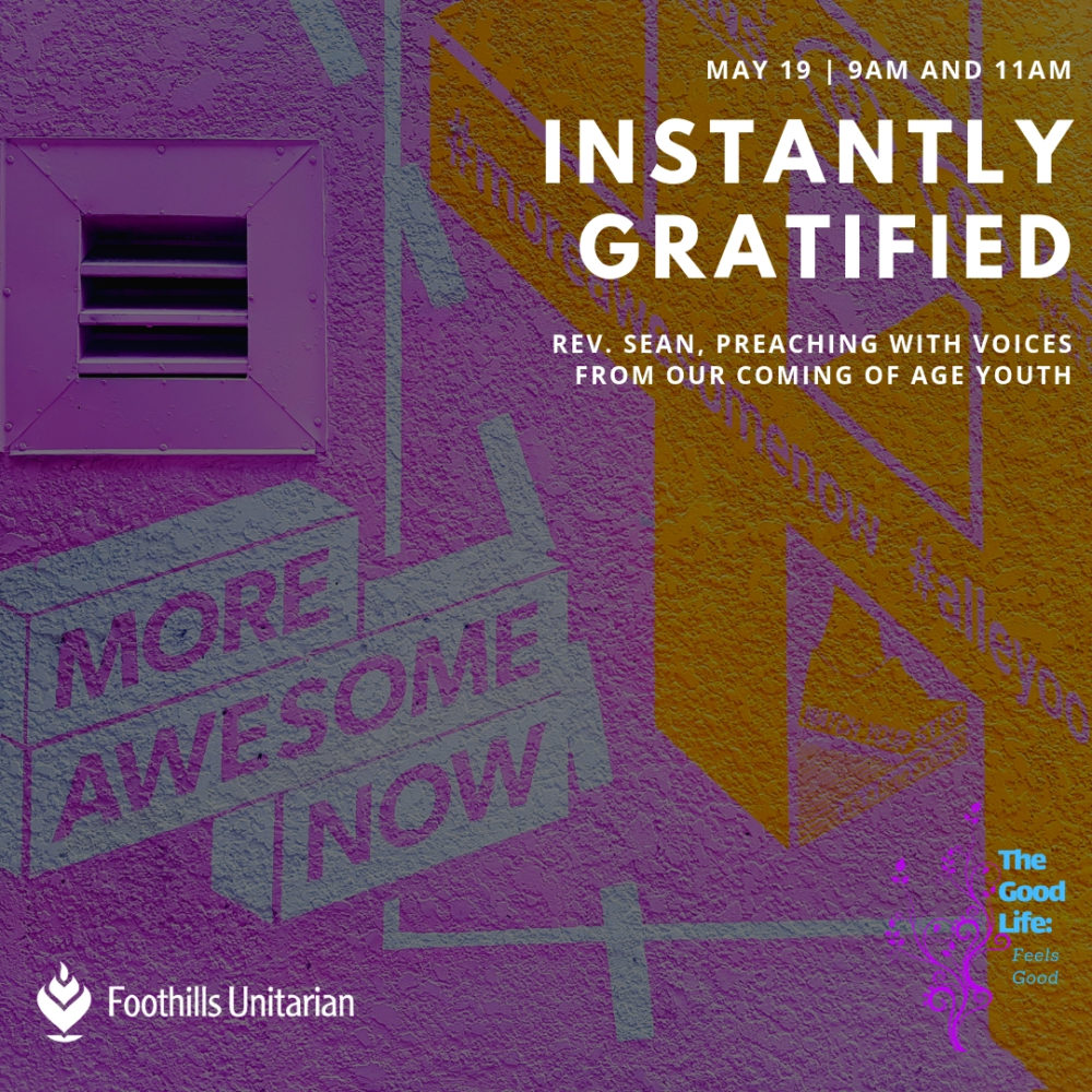 Instantly Gratified