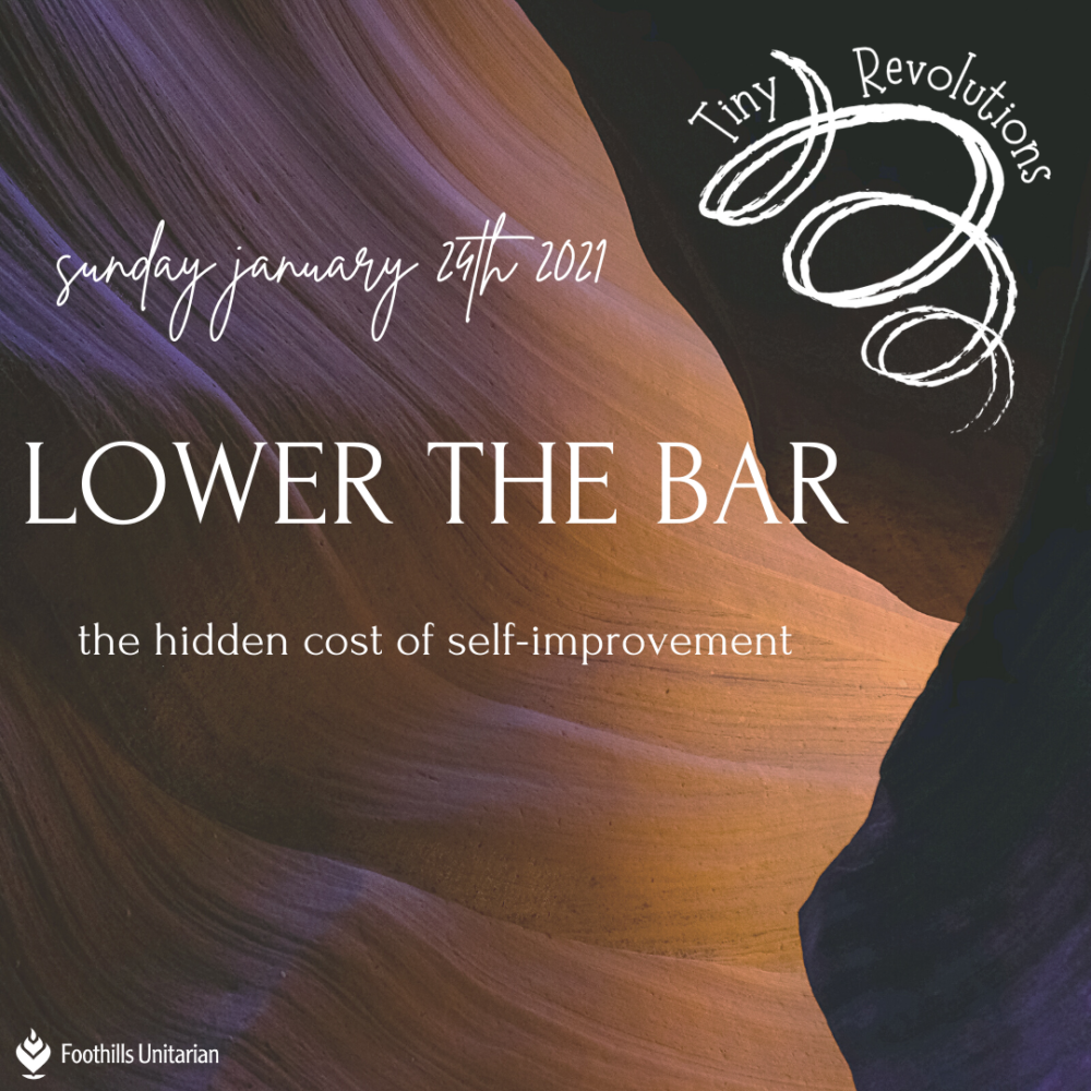 Homily: Lower the Bar | Rev. Elaine Aron-Tenbrink | January 24, 2021 Image