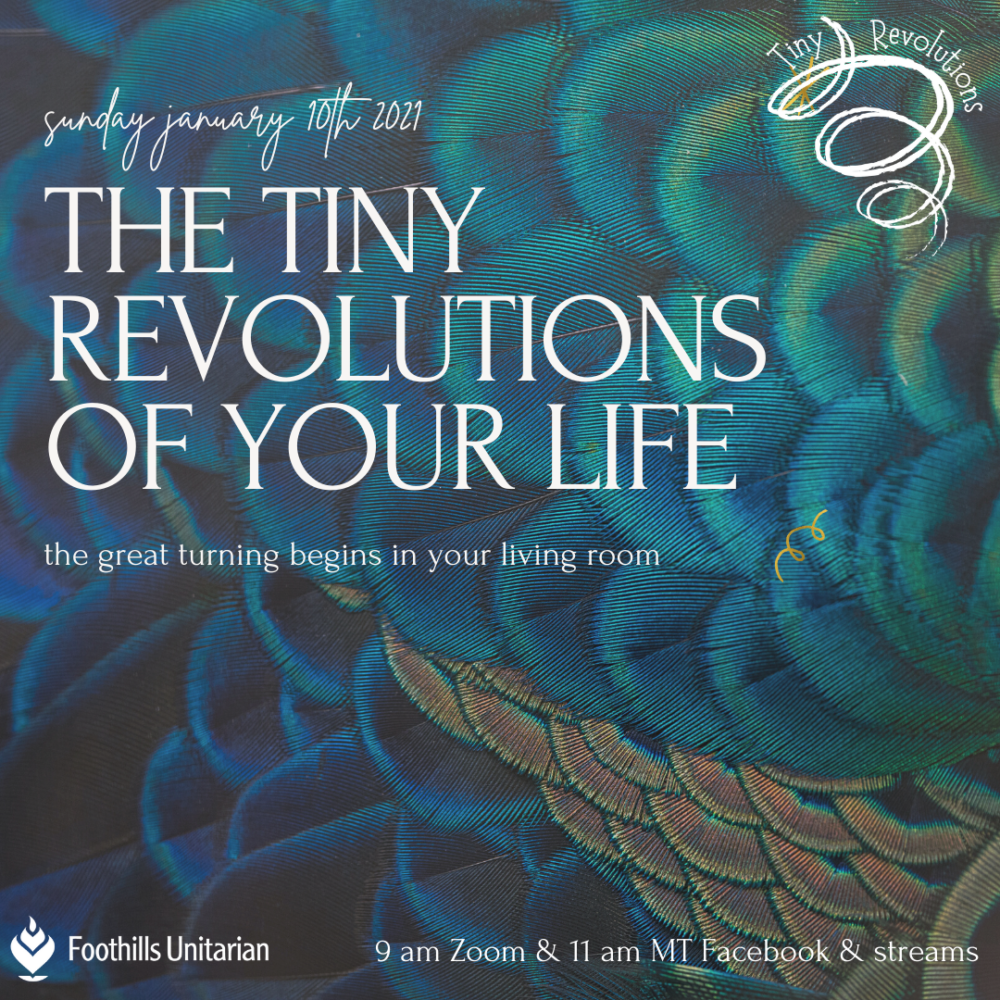 Homily Part 3: The Tiny Revolutions of Your Life | Rev. Gretchen Haley | January 10, 2021 Image