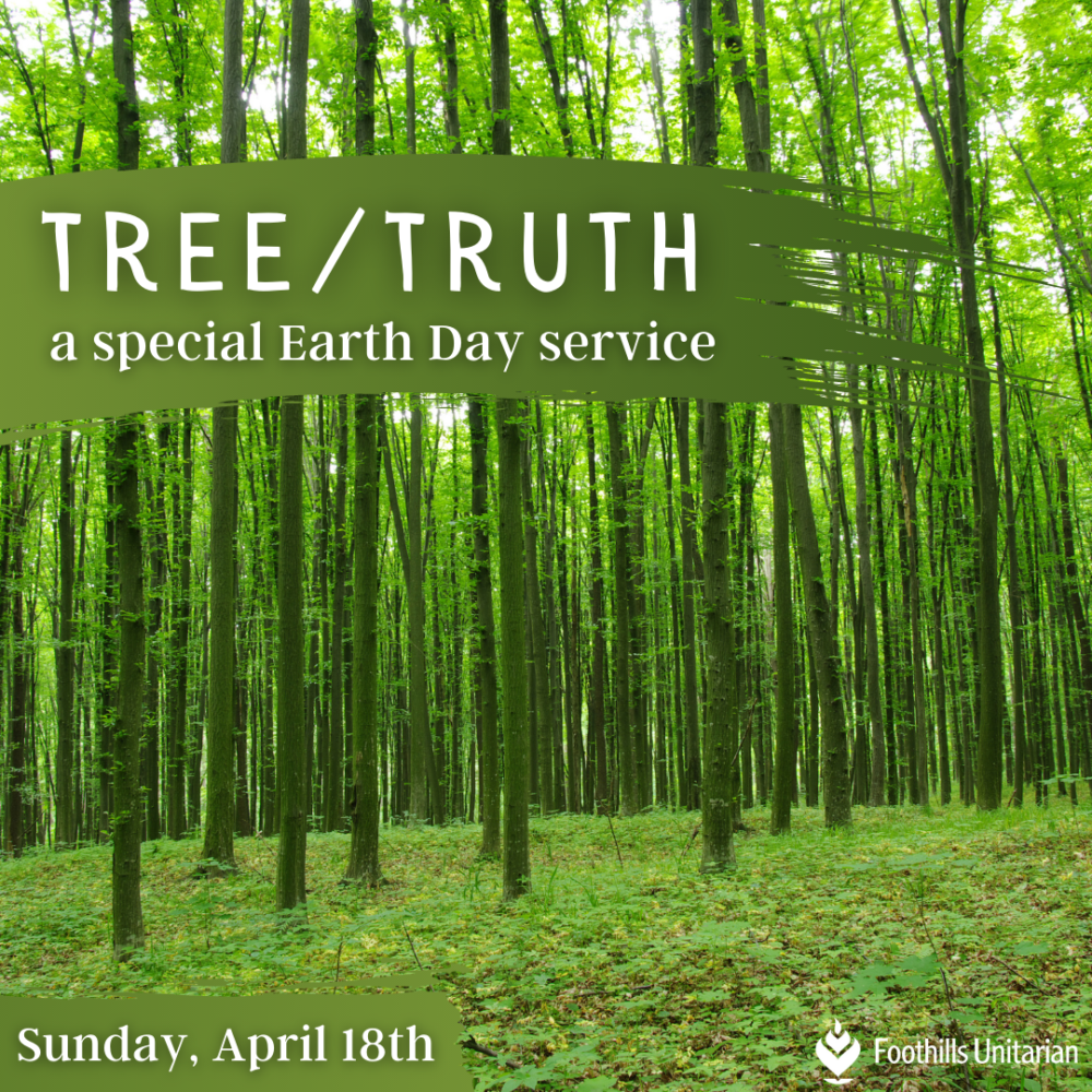 Homily Part One: Tree/Truth | Rev. Gretchen Haley | April 18, 2021 Image